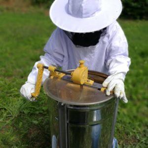 ハチミツ採蜜