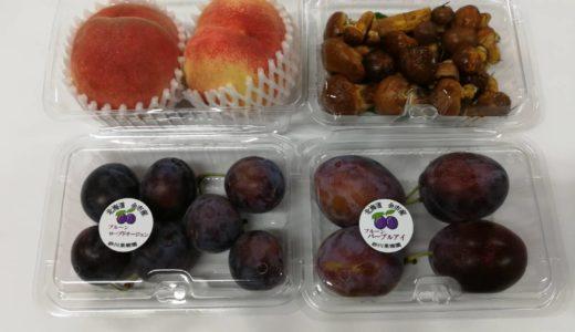 道の駅スペースアップルよいちにて青空市やってます。旬の果物や初キノコも登場!