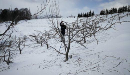 北海道の農家って冬は何してるの?  疑問解決 その3-1