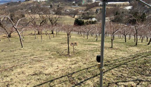 北海道余市の農家が平成最後の4月を振り返る(その2)