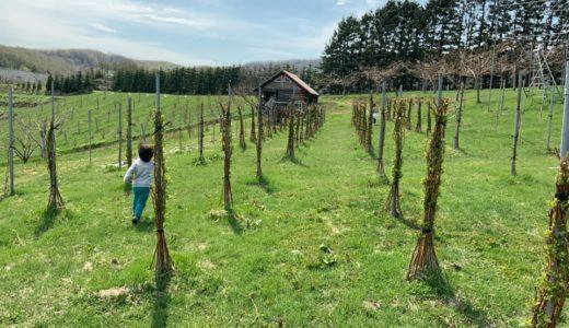 北海道余市の農家が平成最後の4月を振り返る(平成の終わりと共に)