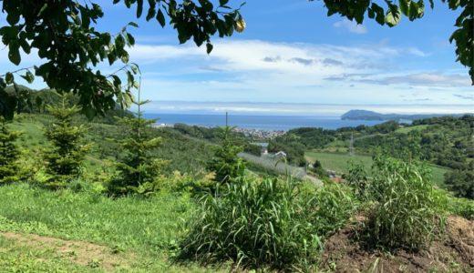 北海道の夏も最後⁉︎  ここで天空の果物情報ををお知らせ致します。